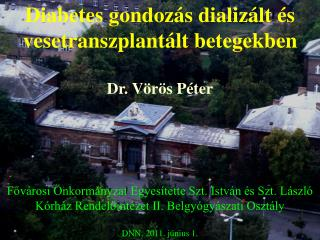Diabetes gondozás dializált és vesetranszplantált betegekben Dr. Vörös Péter
