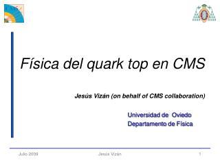 Jes�s  Viz�n (on behalf of CMS collaboration)