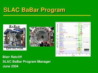 SLAC BaBar Program