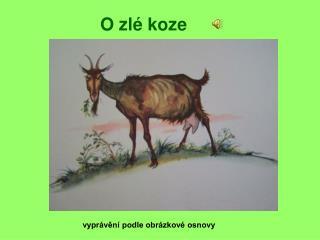 O zlé koze