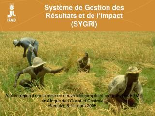 Système de Gestion des Résultats et de l'Impact (SYGRI)