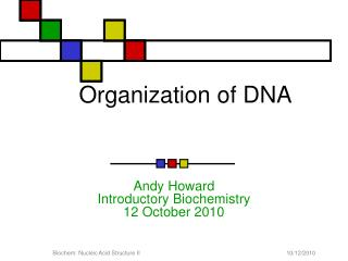 Organization of DNA
