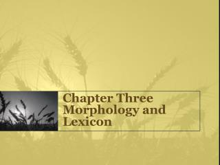 Chapter Three Morphology and Lexicon