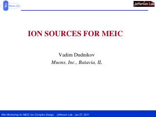 ION SOURCES FOR MEIC