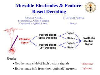 Movable Electrodes & Feature-Based Decoding