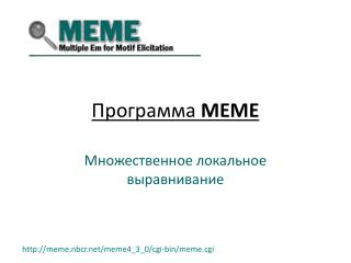Программа  MEME