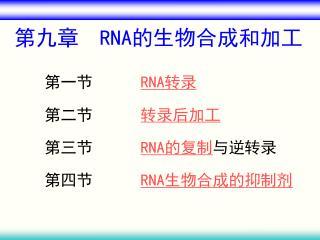 第九章   RNA 的生物合成和加工