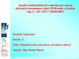 Předmět: český jazyk   Ročník:  6.  Téma: Podstatná jména pomnožná, hromadná a látková