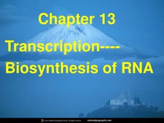 Transcription----Biosynthesis of RNA