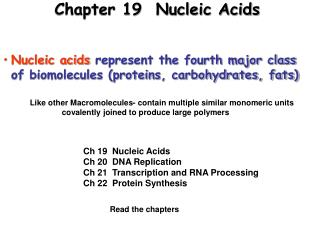 Chapter 19  Nucleic Acids