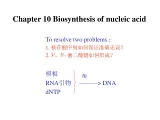 Chapter 10 Biosynthesis of nucleic acid