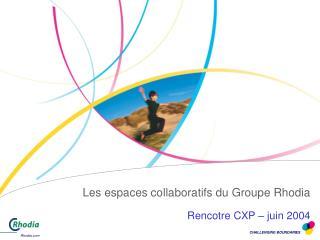 Les espaces collaboratifs du Groupe Rhodia