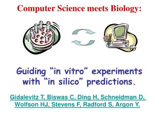"Computer Science meets Biology: Guiding ""in vitro"" experiments with ""in silico"" predictions."