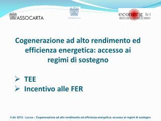 Cogenerazione ad alto rendimento ed efficienza energetica: accesso ai regimi di sostegno TEE