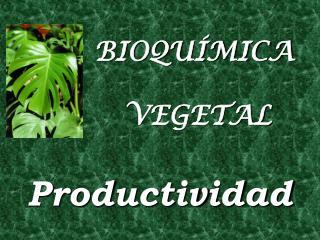 BIOQUÍMICA   VEGETAL