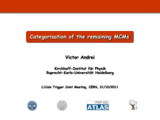 Categorisation of the remaining MCMs