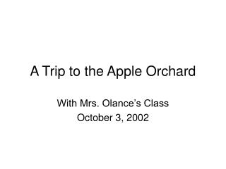 A Trip to the Apple Orchard