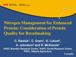 Nitrogen Management for Enhanced Protein: Consideration of Protein Quality for Breadmaking