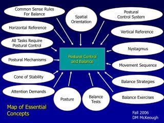 Postural Control and Balance