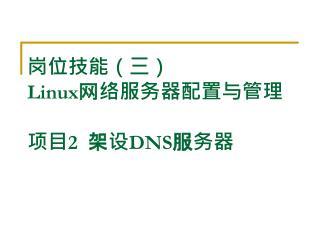 岗位技能(三) Linux 网络服务器配置与管理 项目 2   架设 DNS 服务器