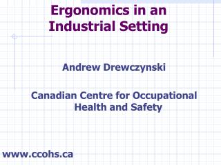 Ergonomics in an Industrial Setting