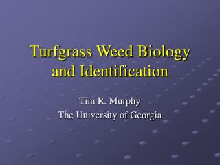 Turfgrass Weed Biology and Identification
