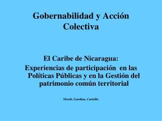 Gobernabilidad y Acción Colectiva