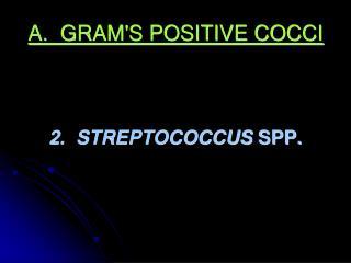 A.  GRAM'S POSITIVE COCCI