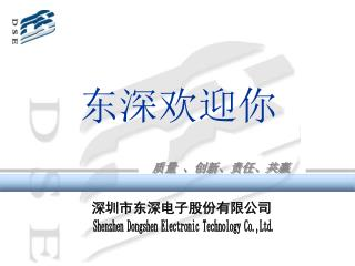 Shenzhen Dongshen Electronic Technology Co.,Ltd.