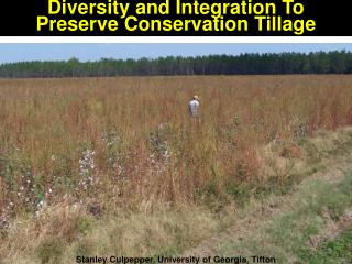 Diversity and Integration To Preserve Conservation Tillage