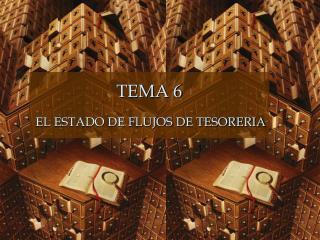 TEMA 6 EL ESTADO DE FLUJOS DE TESORERIA