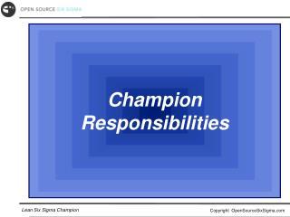 Champion Responsibilities