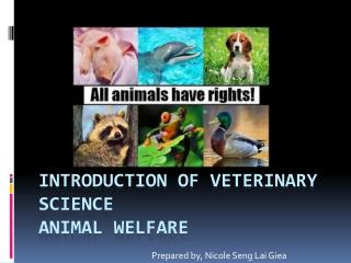 Introduction of veterinary  science Animal  Welfare