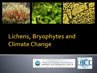 Lichens, Bryophytes and Climate Change
