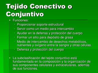 Tejido Conectivo o Conjuntivo