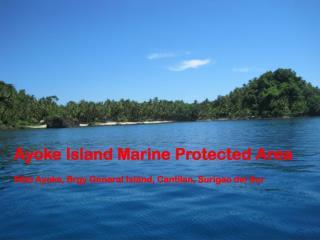 Ayoke Island Marine Protected Area Sitio Ayoke, Brgy General Island, Cantilan, Surigao del Sur
