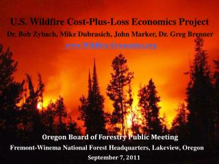 U.S. Wildfire Cost-Plus-Loss Economics Project