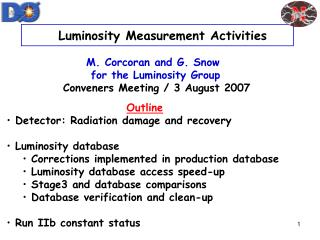Luminosity Measurement Activities M. Corcoran and G. Snow