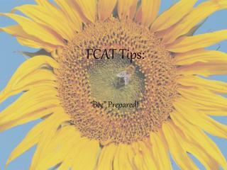 FCAT Tips: