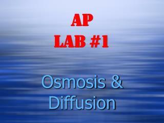 AP Lab #1