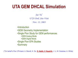 UTA GEM DHCAL Simulation