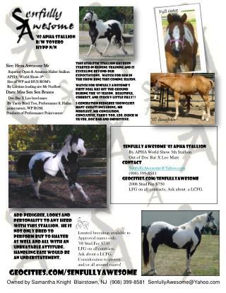 '02 APHA Stallion B/W Tovero HYPP N/N
