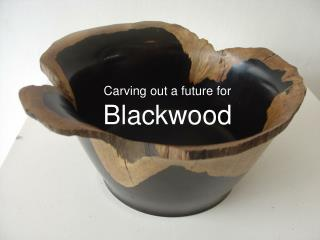 Carving out a future for Blackwood