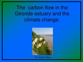 The  carbon flow in the Gironde estuary and the climate change.