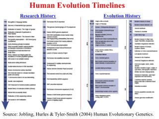 Human Evolution Timelines