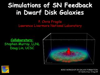Simulations of SN Feedback in Dwarf Disk Galaxies