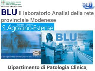 BLU Il laboratorio Analisi della rete  provinciale Modenese