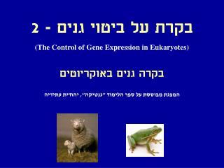 בקרת על ביטוי גנים - 2  (The Control of Gene Expression in Eukaryotes)