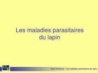 Les maladies parasitaires du lapin