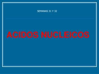 SEMANAS 31 Y 32